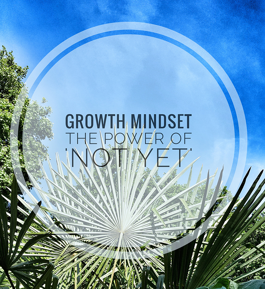 Guest Blog – Master your Mindset to Succeed with Ease – by Will Aylward